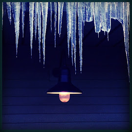 Icicles by Michelle LaForte Hartigan - Nature Up Close Water