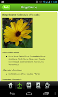 Screenshot of Phytotherapie / Heilpflanzen
