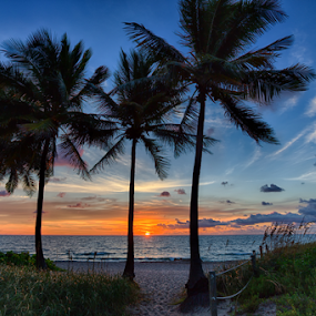 Deerfield Beach Sunrise by Tim Azar - Landscapes Waterscapes ( shore, water, clouds, orange, sand, deerfield beach, hdr, tropical, ocean, tourism, beach, landscape, coast, sky, blue, sunset, florida, shoreline, path, sea oats, trees, sunrise )