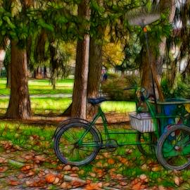 by Branka Radmanić - Transportation Bicycles