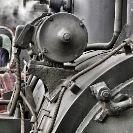 by Ioana Christina - Transportation Trains (  )