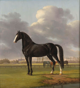 RIJKS: Anthony Oberman: Adriaan van der Hoop's Trotter 'De Vlugge' (The Fast One) in a Meadow 1828