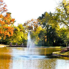 Will Rogers Park  by Stephanie Hampton - City,  Street & Park  City Parks ( okc, nature, park, oklahoma )