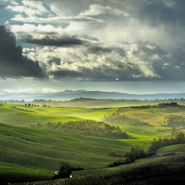 Tuscany by Ivan Bertusi - Landscapes Mountains & Hills ( clouds, hills, tuscany, colors, green, light, rural )
