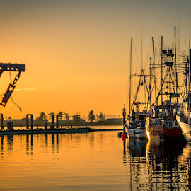 golden fishing boats by Barb Postal - Transportation Boats ( fishing boats, sunset, marina, golden )