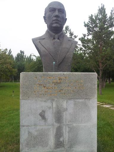 戈尔伊万诺维奇西科斯基