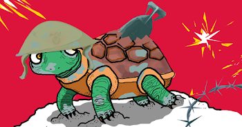 11. Give the Turtle a Shell