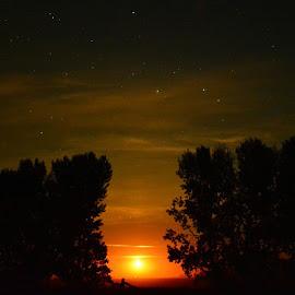 Moonrise by Erica Brown - Instagram & Mobile Other ( instagram, moon, north dakota, stars, ndlegendary, trees, night, prairie, rural, moonrise )