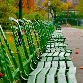 by Peggy Bogaerts - City,  Street & Park  City Parks