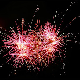 fireworks by Shaun Thompson - Abstract Fire & Fireworks