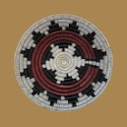 Speak Navajo Volume 4 Language icon