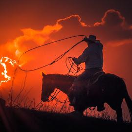 The Dream Chaser by Gary Hanson - Digital Art People ( horseback, cowboy, roping, chaser, dream, sunset, sundown, catching,  )