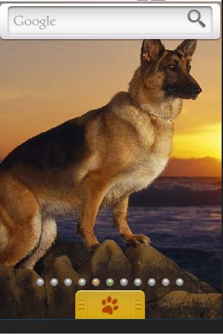 German Shepherd Theme