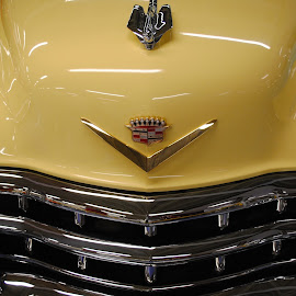 Cream, Gold and Chrome by Richard Rabitaille - Transportation Automobiles ( gold, chrome car grill, cream,  )