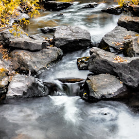 little creek by Amber Olsen - Landscapes Waterscapes ( water, iowa, fall colors, waterfall, rocks )