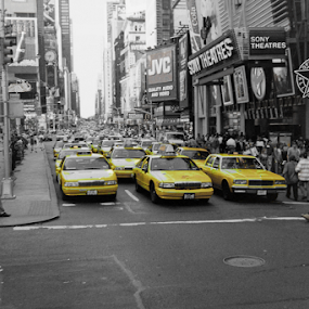 NYC Taxis by Shaun White - City,  Street & Park  Street Scenes