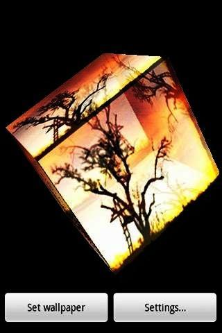 3D tree 009
