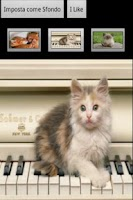 Screenshot of Meow Cats Free