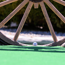 by Dorothy Turnbull - Sports & Fitness Golf ( dorothy & john turnbull photography, grass, green, artstic, mini golf, putt putt golf, yogi bear park, dorothy turnbull, shadow, wagon wheel, golfball, golf, dojo photo )