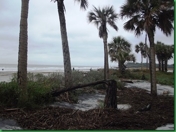 Hunting Island with Nancy & Bill (2)