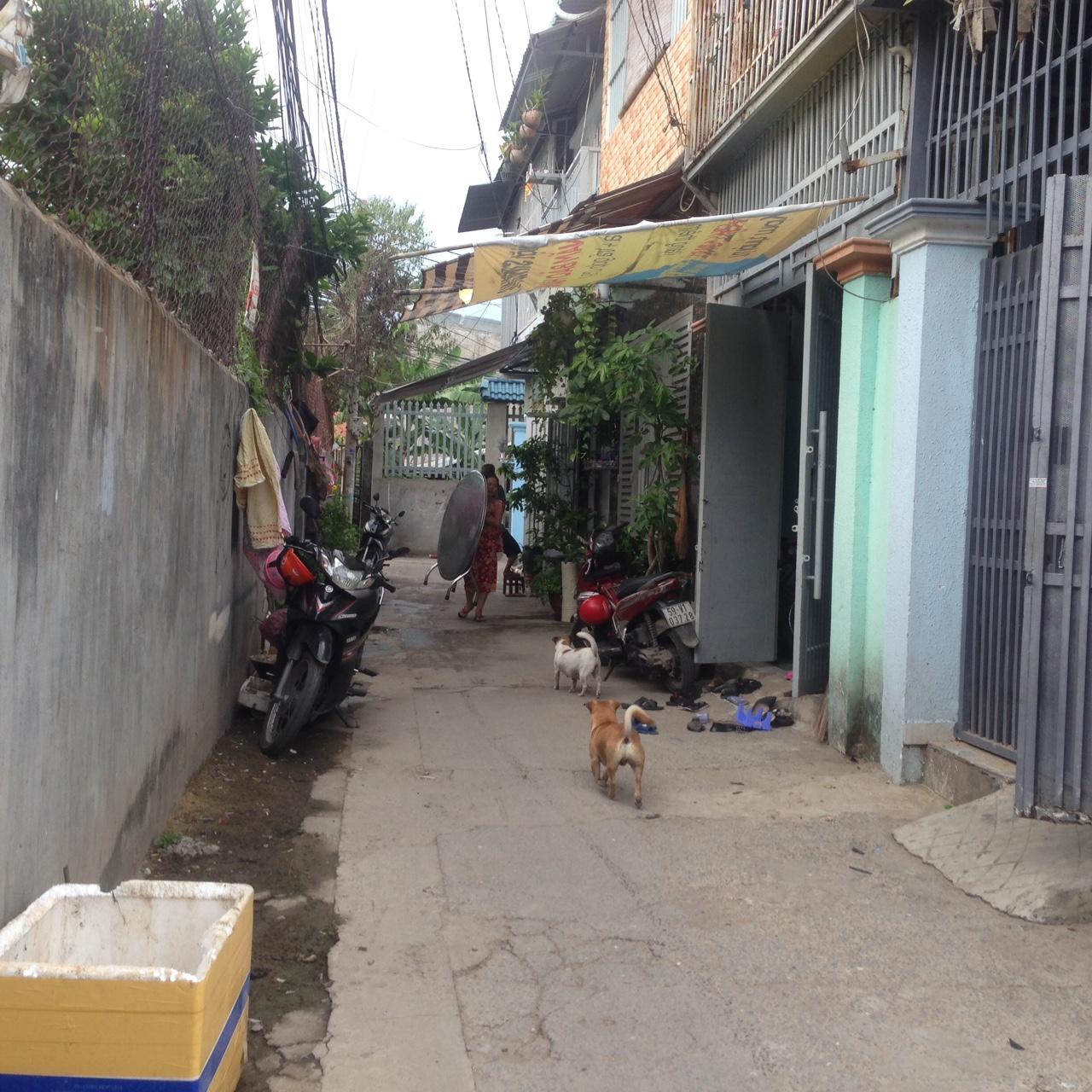 Đất hẻm đường Nguyễn Thị Sóc Huyện Hóc Môn 04