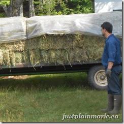 hay square