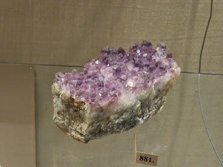 08. Minerale.JPG