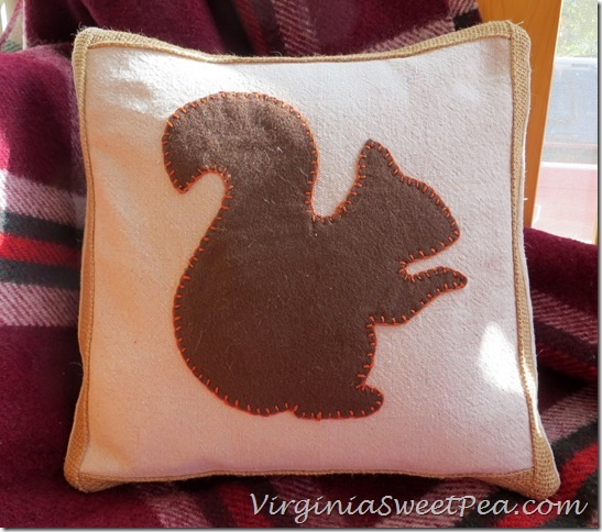 Squirrel Pillow for Fall