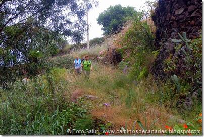 8000 Circular a Firga R3-Barranco Firgas