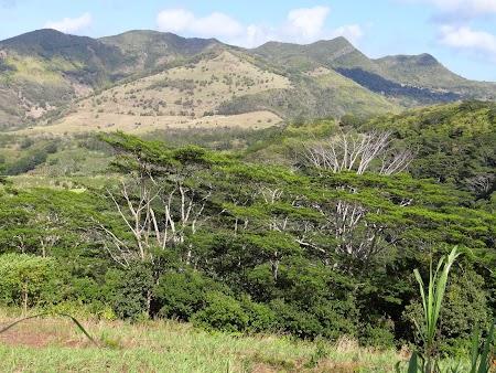 Peisaj din Mauritius