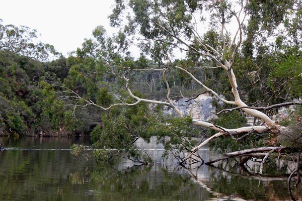 Lower Glenelg National Park