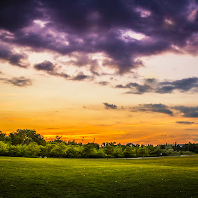 Serene Sunset Over the Green by Benson Paul - Landscapes Sunsets & Sunrises ( orange, park, sunset, greenery, lonely, sun )