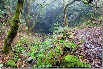 6838 Barranco Andén-Cueva Corcho(Barranco Andén)