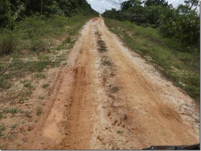 BR-319_Humaita_Manaus_Day_2_DSC05408