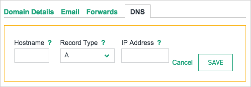 DNS record form fields