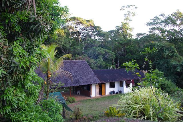 Le Relais Patawa (Montagne de Kaw), 23 octobre 2012. Photo : J.-M. Gayman
