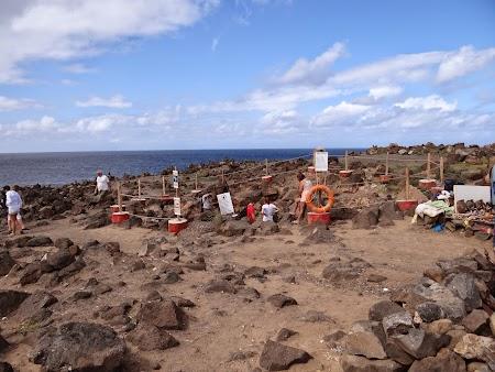 11. Blue Eye Sal Cape Verde.JPG