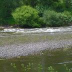 Loire au niveau d'Épercieux-Saint-Paul, aval, rive droite photo #1026