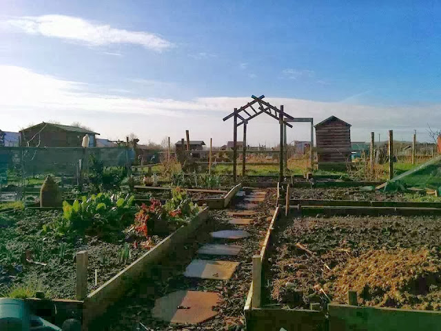 Plot 24a, 16th Feb - 'Grow Our Own' Allotment Blog