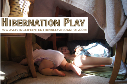 Help kids learn about the seasons and hibernation through play #science #preschool #homeschooling