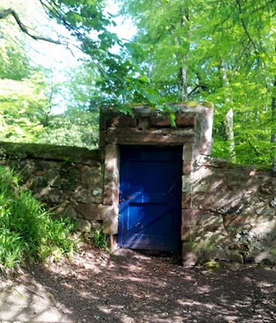 Andy's Picture of the Fanmous Blue Door