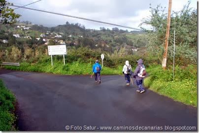 7344 La Laguna-Barranco Laurel(Lomo de los Pinos)