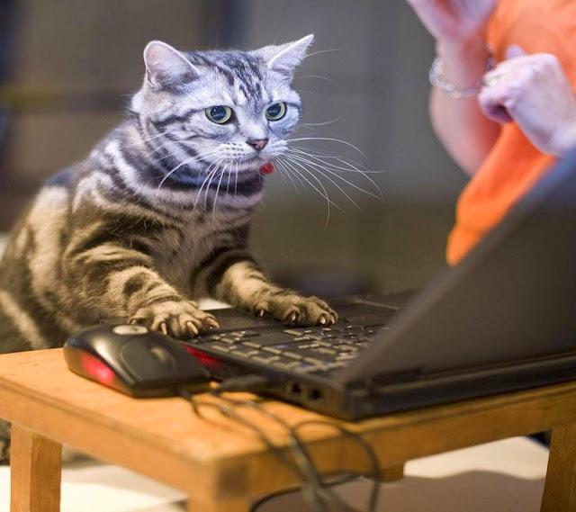 Laptop rosak