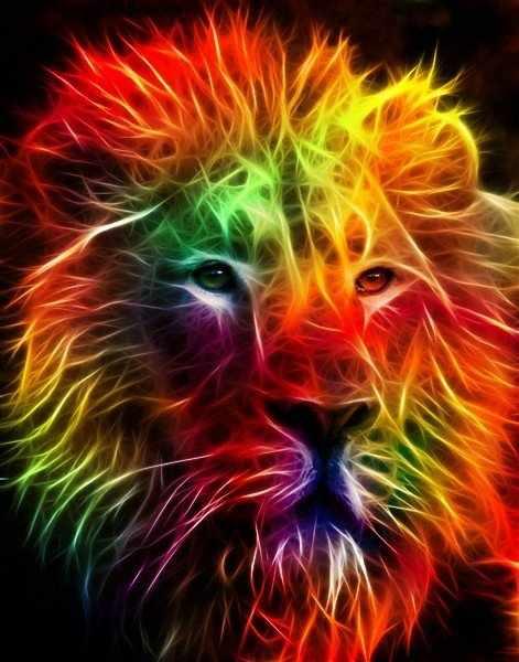 I ♥ Art: Colorful lion cool - photo#34