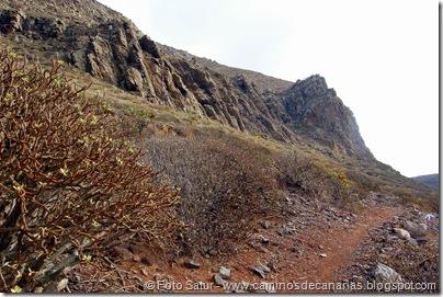6484 Montaña de Amagro