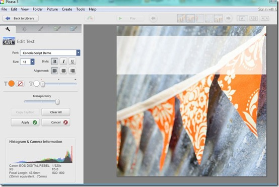 Picasa Text Overlay