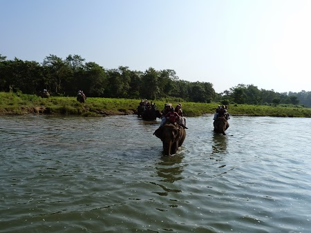 37. Jungle safari - Chitwan.JPG