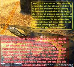DSC03359.JPG Bild på Orm. Med text och amorism. Alla varelser är viktiga. Varje varelse bör vara på sin plats