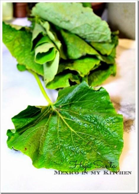 Mole verde recipe