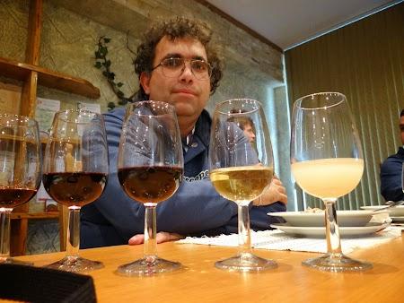 Basarabia - Drumul Vinului:  Degustare Romanesti